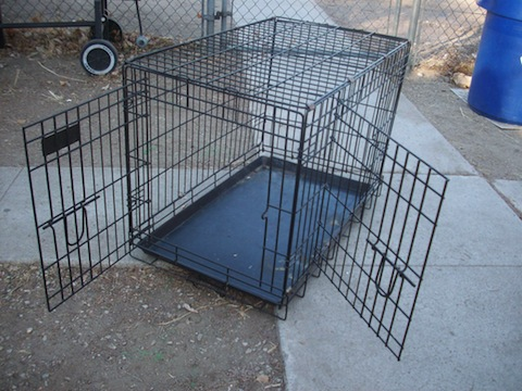 Pet Safe Disaster Tip # 25 – Keep Pet Crates Handy
