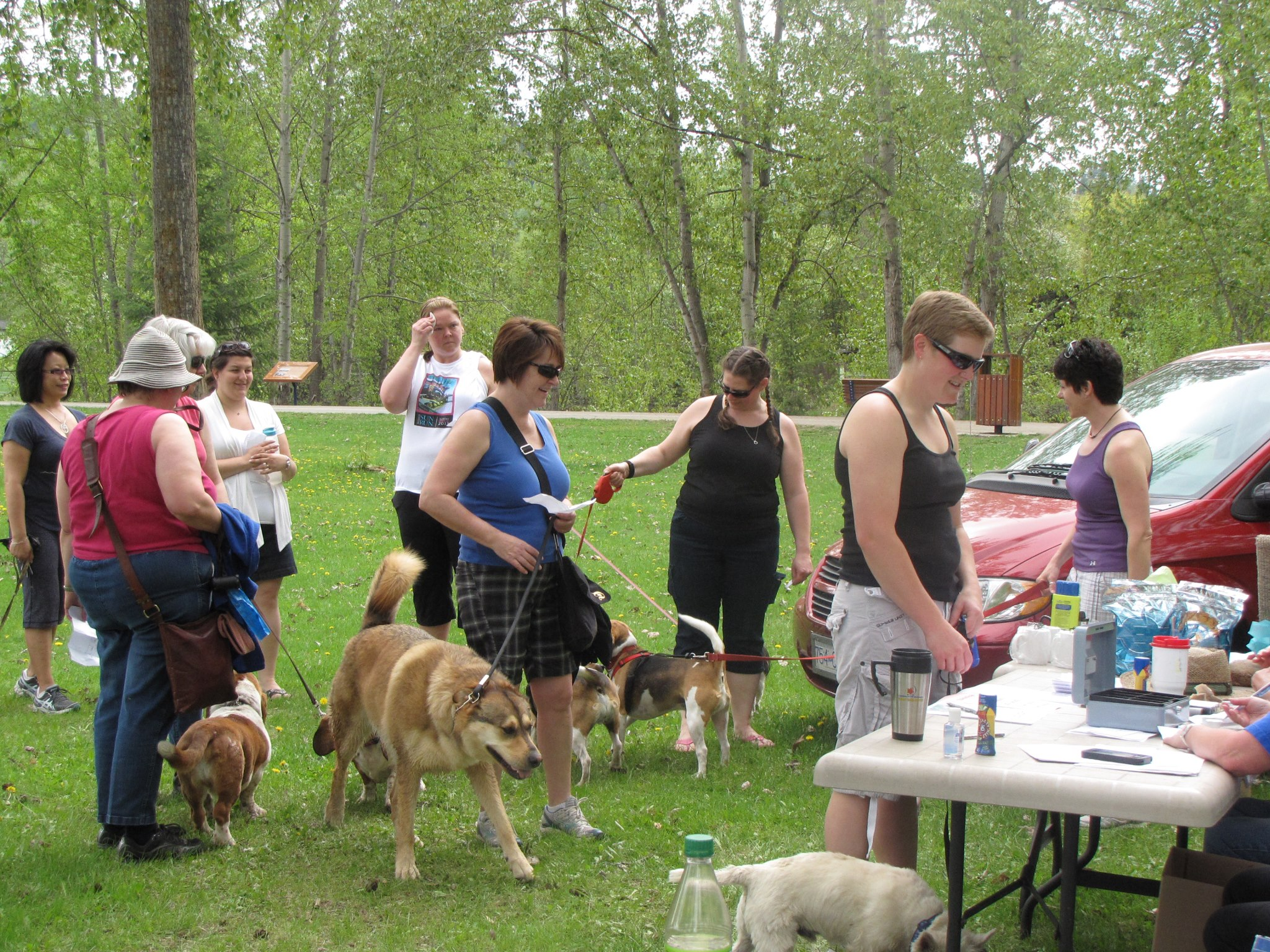 Doggy Poker Walk Fundraiser Spring 2013