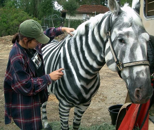 Pet Disaster Tip #36: Turning Horses Loose