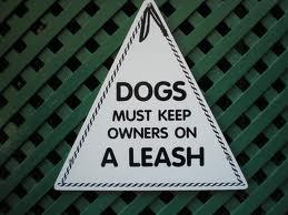Pet Tip #33